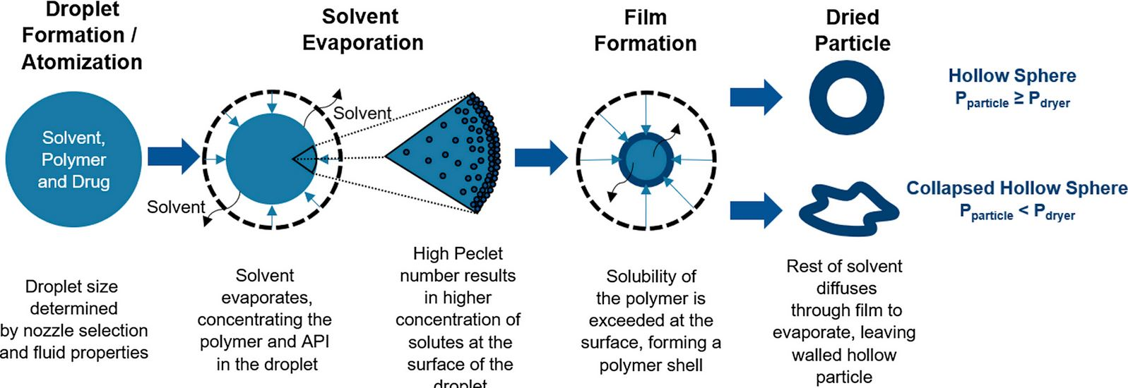 Particle formation during spray drying