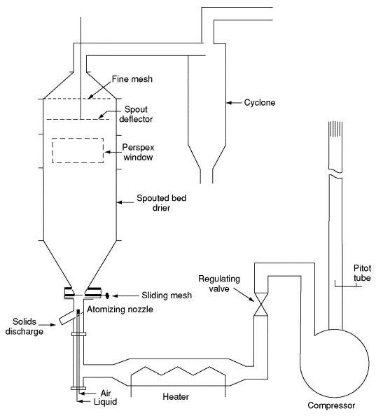Batch fluid bd processor