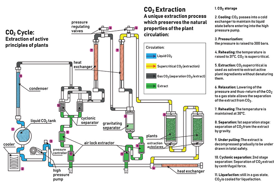Winterization In Botanical Extraction Machine